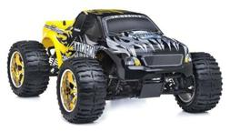 1/10 2.4G Exceed RC Radio Infinitive Nitro Gas RTR Monster 4
