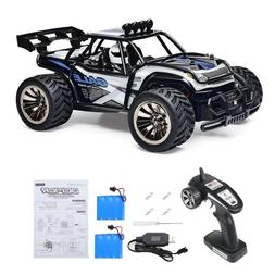 Distianert 1:16 Scale Electric RC Car On & Off Road RTR Vehi