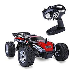 Distianert 1/24 Scale 2WD RC Car, Electric Racing Buggy with