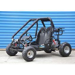 110cc Pre-Teen Go Kart 2-Seater Gas Powe