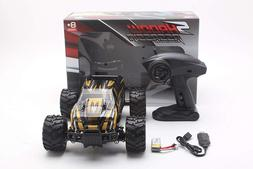 2.4GHz 1:16 Scale RC Remote Control Car Off Road Vehicle Hig