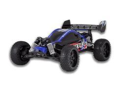 Redcat Racing Caldera XB 10E Brushless Electric Buggy, Blue,
