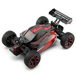 Zhencheng 1/18 Scale Electric RC Truck 2.4Ghz 4WD Extreme Sp