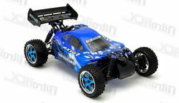 Exceed RC Forza .18 Engine RTR Nitro Powered Off Road Buggy