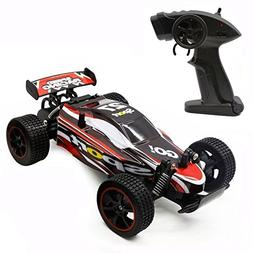 Fast RC Cars Off Road 1:20 2WD Remote Control Trucks for Adu