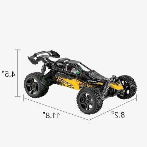 Hosim Control Speed Racing RC