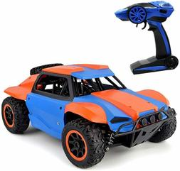 Racing Rally 1/18th scale 4WD Electric RTR RC Rally car