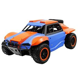 Rabing RC Car 1:18 High Speed 2.4GHz Wireless Remote Control