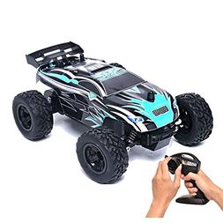 Rabing RC Car 1/24 Scale 15km/h Radio Controlled Electric Ve