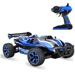 Rabing RC Car High Speed 20km/h 1:18 4WD Electric Power Truc