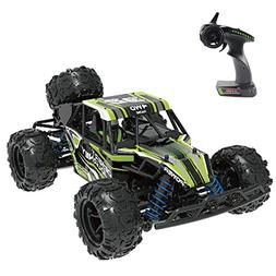 Fistone 1:18 RC Car High Speed Racing Vehicle RTR Monster Tr