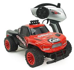 RC Cars 1/16 Scale 2WD High Speed Vehicle 15MPH+ 2.4Ghz Radi