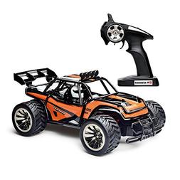 Remote Control Car,High Speed Off Road Monster RC Truck - 1/