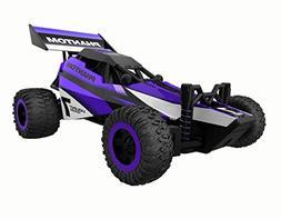 Gizmovine Remote Control RC Racing car – High Speed Purple